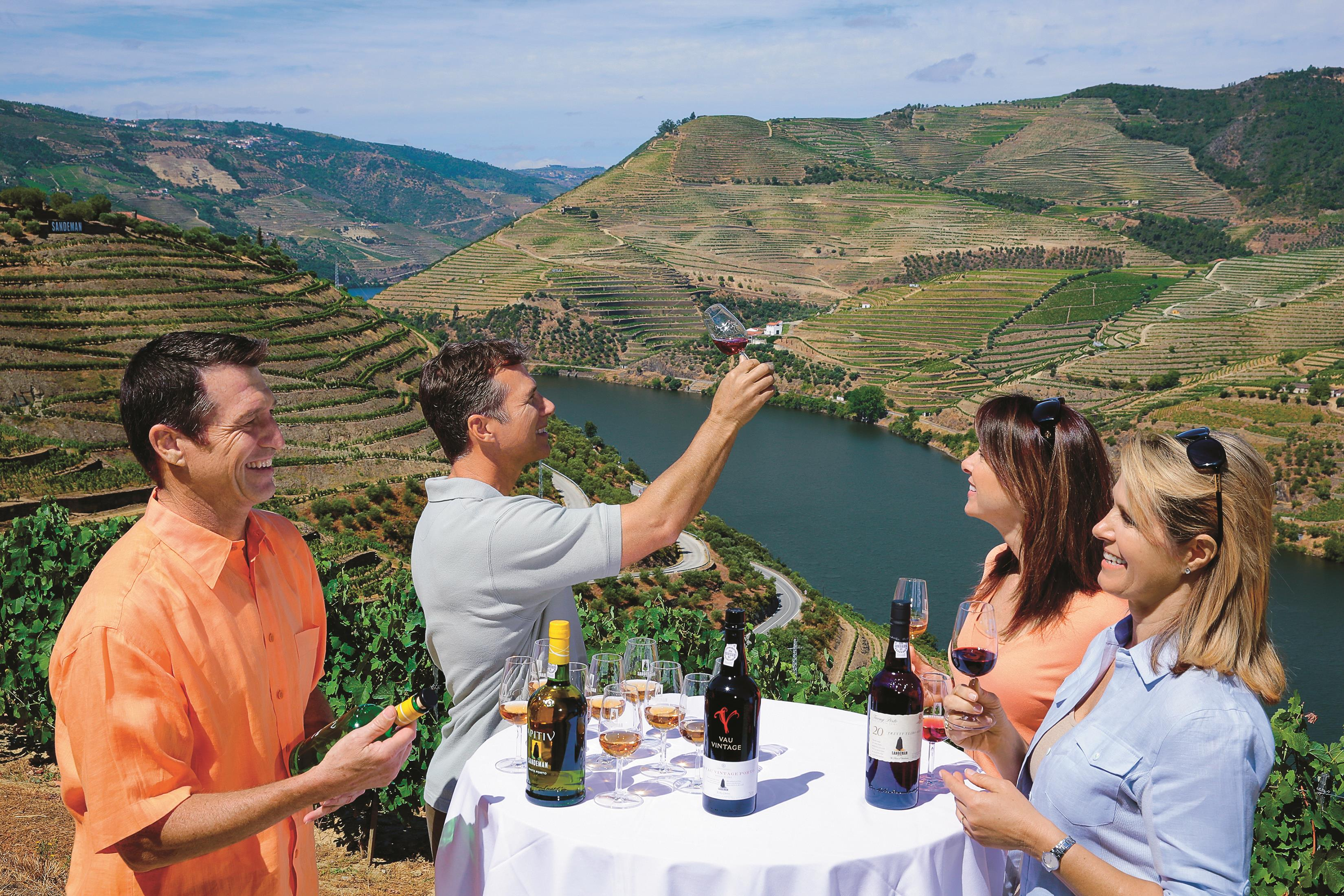 Sandeman Winery Tasting in Douro Valley